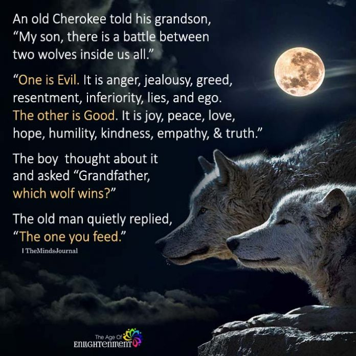 An-old-Cherokee-told-his-grandson-696x696